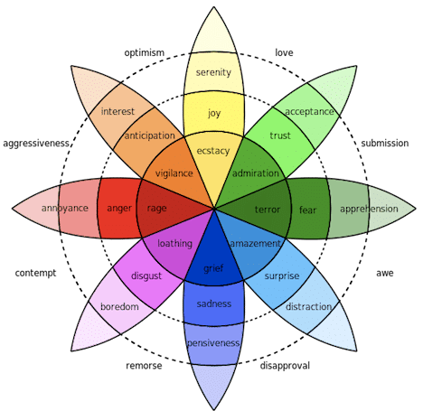 The Wheel Of Emotions Can Determine Who You Are