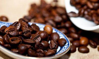 coffee coffee beans grain coffee roasted coffee