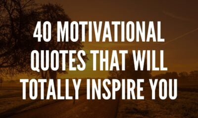 Motivational Quotes That will inspire you