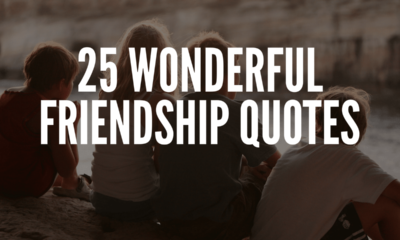 Wonderful friendship quotes