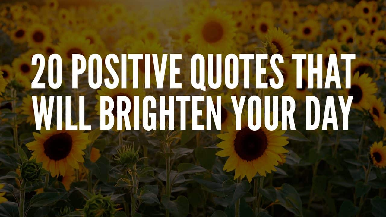 20 Positive Quotes That Will Brighten Your Day