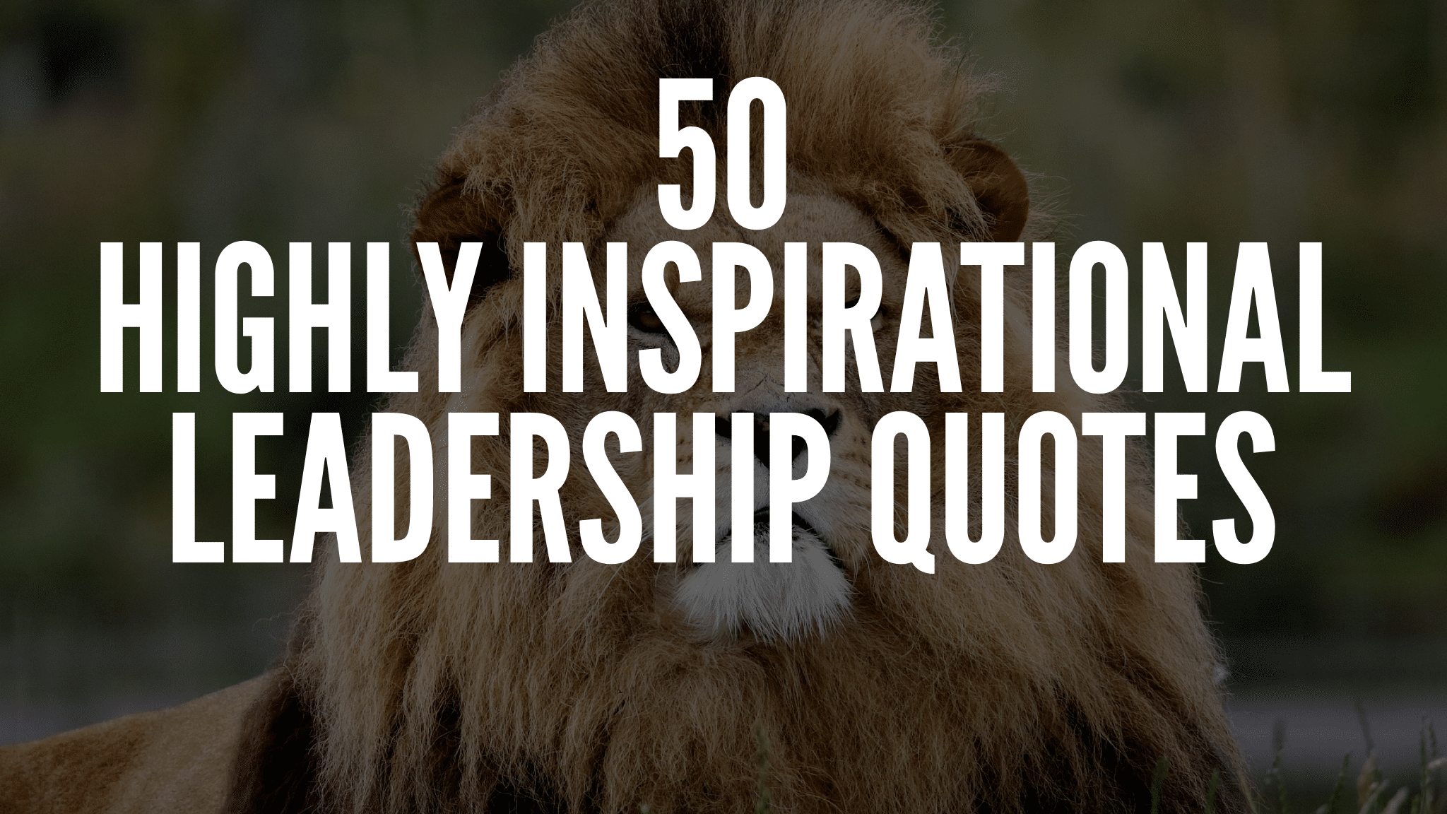 Highly Inspirational Leadership Quotes