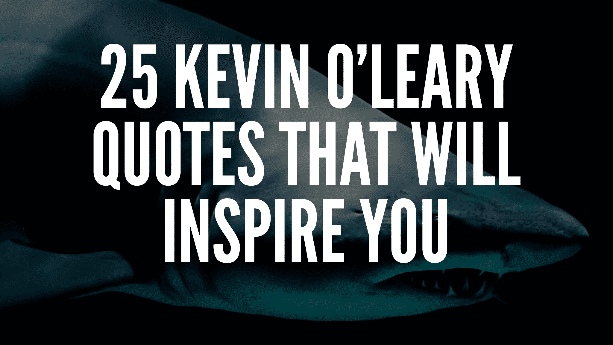25 Kevin O'Leary Quotes That Will Inspire You