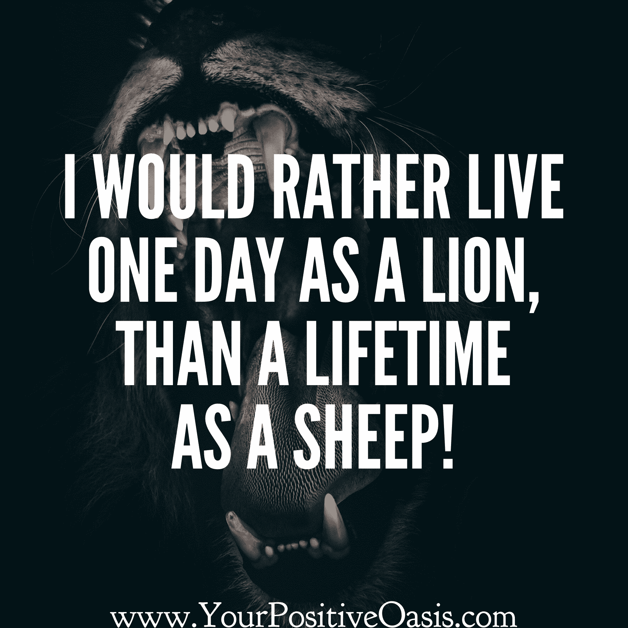 25 Powerful Lion Quotes That Will Inspire You