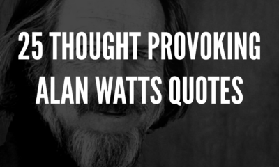 25 Thought Provoking Alan Watts Quotes